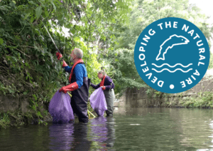 Two people wading whilst litter picking in a river